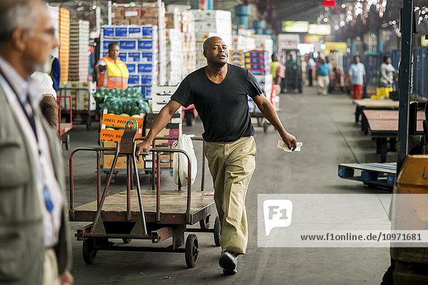 Man moving a cart at the Tshwane Fresh Produce Market; Pretoria  Gauteng  South Africa