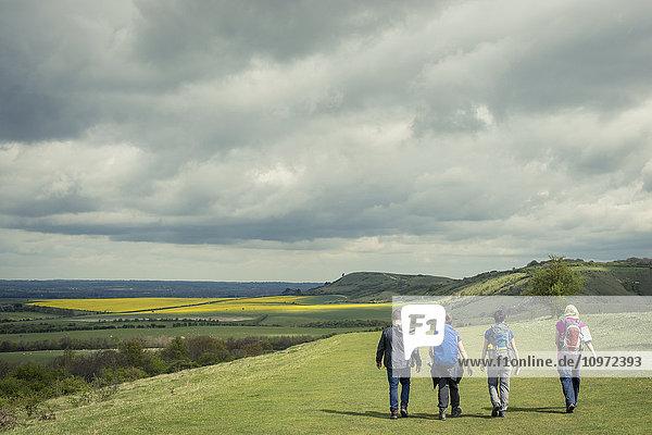 'Walking in the english countryside; Tring  Borough of Dacorum  Hertfordshire  England'