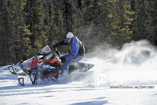 Snowmachiner on Little Harding Lake near Fairbanks  Alaska  winter