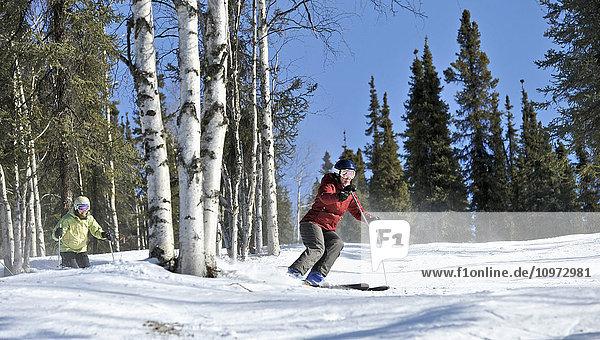 Downhill skiers at Mt. Aurora Skiland near Cleary Summit north of Fairbanks  Alaska