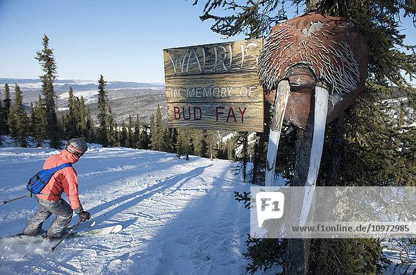 'The ''Walrus run'' at Mt. Aurora Skiland near Cleary Summit north of Fairbanks  Alaska'