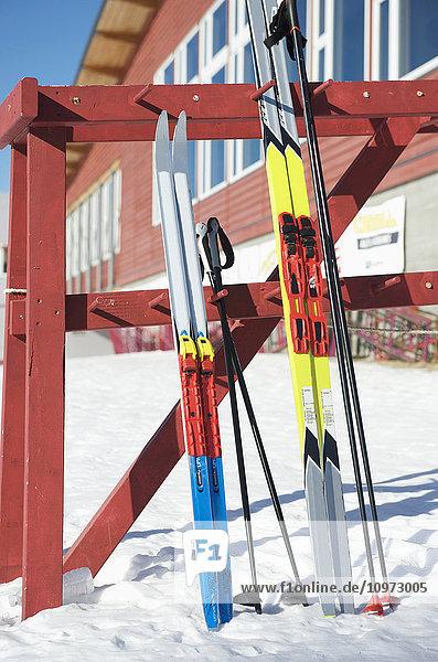 Nordic skies at Birch Hill Recreation Area in Fairbanks  Alaska