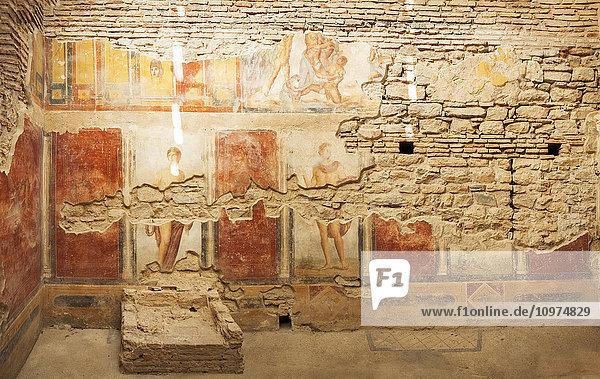 'Fresco painting in a museum; Ephesus  Izmir  Turkey' 'Fresco painting in a museum; Ephesus, Izmir, Turkey'