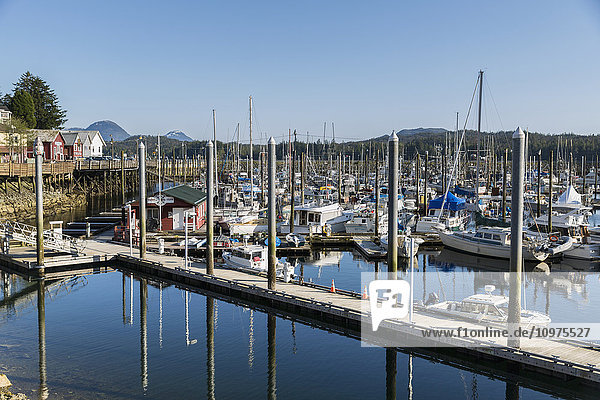 Boats docked in the small boat harbor in downtown Ketchikan  Southeast Alaska  USA  Spring
