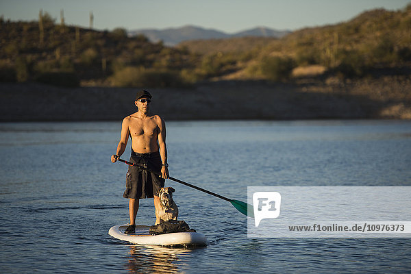 'Stand up paddle boarding on tranquil Lake Pleasant; Arizona  United States of America'
