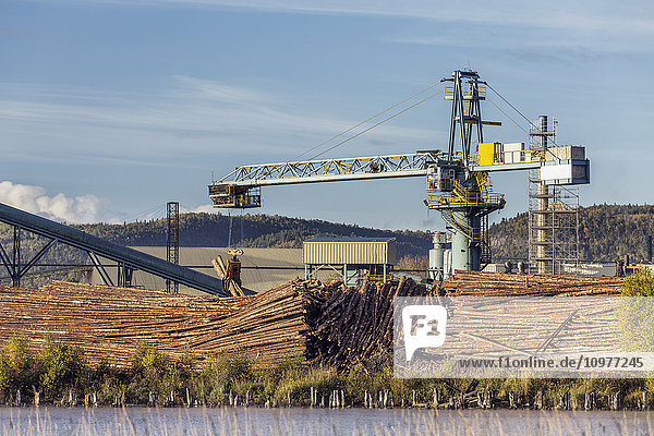 'Pulp and paper mill; Thunder Bay  Ontario  Canada'