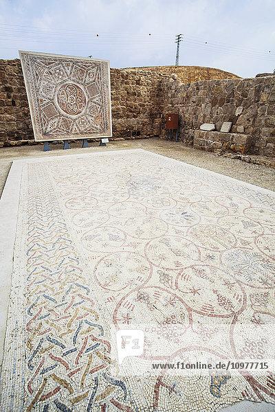 'Mosaic floor from the Chapel at Deir Qal'a; Israel' 'Mosaic floor from the Chapel at Deir Qal'a; Israel'