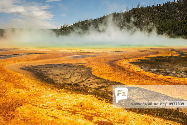 'Steam rises from the Grand Prismatic Spring in Yellowstone National Park; Wyoming  United States of America'