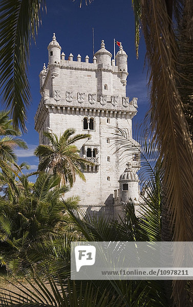 Belem Tower Through Palm Trees  Lisbon  Portugal  Europe