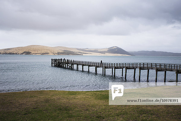'A pier extends into the Hokianga Harbor  the Tasman Sea in the background; Omapere  Northland  New Zealand'