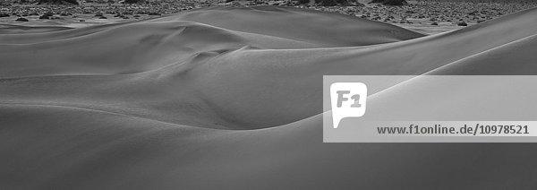 Mesquite Sand Dunes  Death Valley National Park  California.