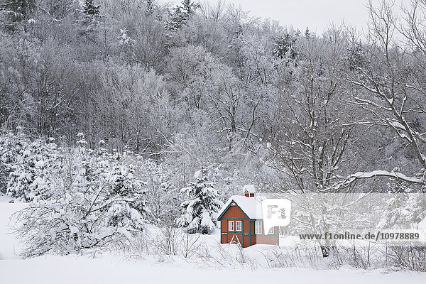 'Barn style storage shed in a field with frost and snow-covered trees in winter; Eastern Townships  Quebec  Canada'
