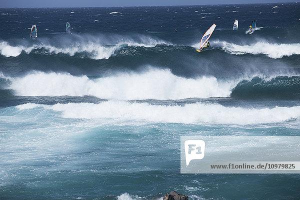'Wind surfers and sail boarders at Ho'okipa Beach  on the road to Hana; Paia  Maui  Hawaii  United States of America'