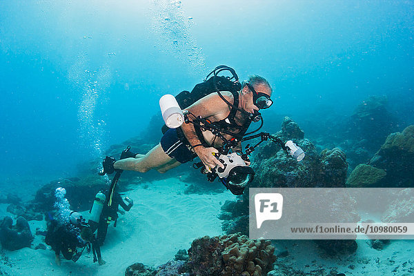 'An underwater photographer off the island of Yap; Yap  Micronesia'