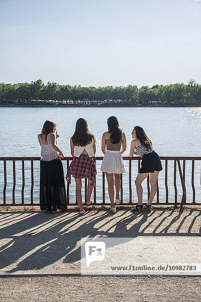 Rückansicht von vier Freunden  die im Sonnenlicht vor dem Wasser stehen.