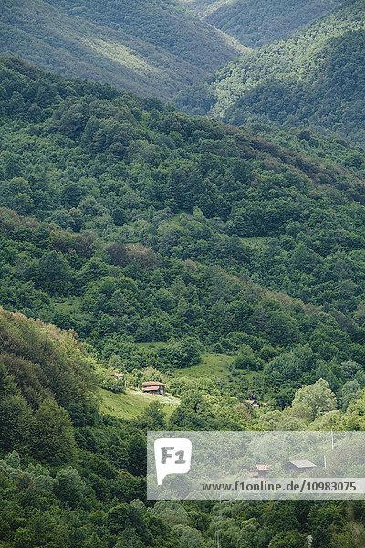 Bulgarien  Trun  Holzhäuser in den Bergen