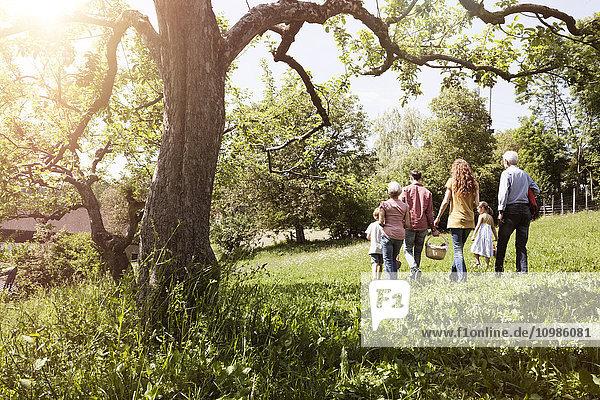 Familienwanderung mit Picknickkorb auf der Wiese