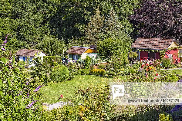 Deutschland  Esslingen  Gartenanlagen mit Gartenhäusern