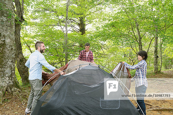 Multi-ethnic group of friends putting up a tent at a camp site
