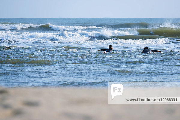 Japanese surfers paddling in the sea