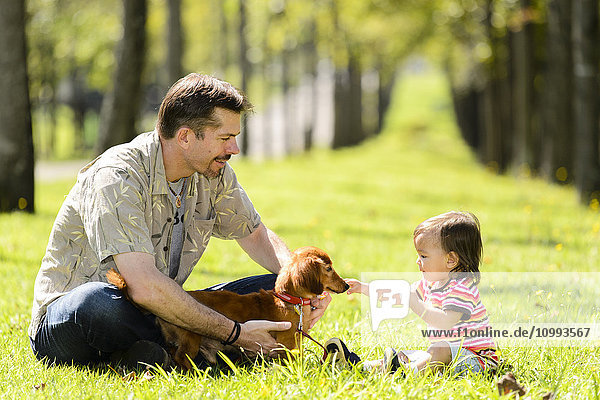 Kid and dad playing with dog in a city park