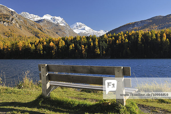 Bench and Silsersee in Autumn  Engadin  Canton of Graubunden  Switzerland