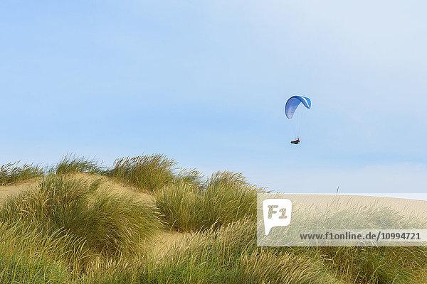 Sand Dune with Paraglider  Rubjerg Knude  Lokken  North Jutland  Denmark