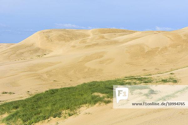Sand Dunes  Rubjerg Knude  Lokken  North Jutland  Denmark
