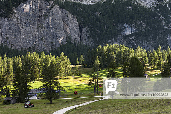 Typical landscape of the Dolomites with green meadows at the foot of big rocky walls  Val Gardena  Trentino Alto Adige  Italy