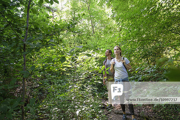 Couple standing in woodlands