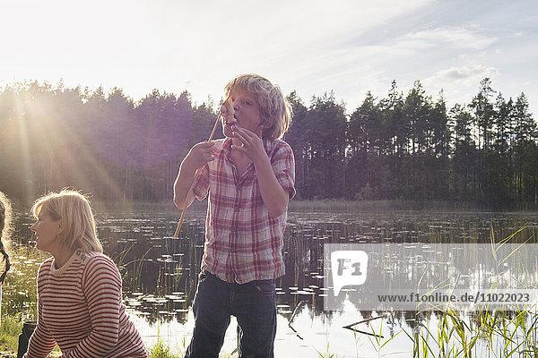 Enthusiastischer Junge isst gebratene Marshmallows am sonnigen Seeufer im Wald.