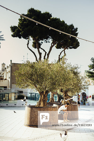 Man sitting on bench amidst trees at footpath