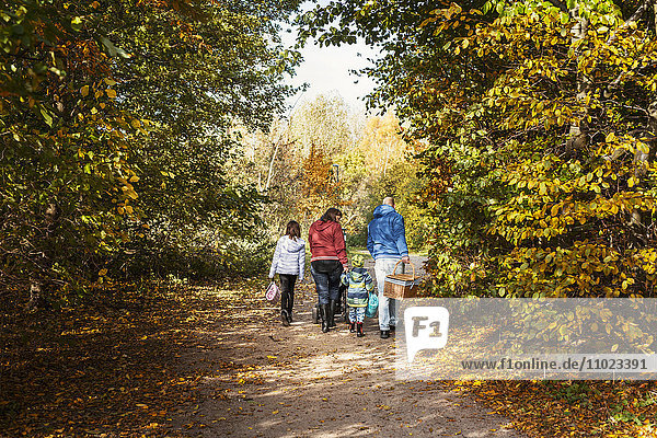 Rear view of parents with children walking on footpath amidst trees during autumn