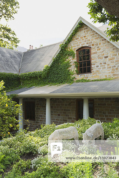Ivy growing over stone walls of home showcase exterior
