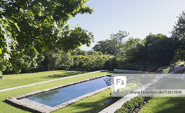 Sunny grass and swimming pool