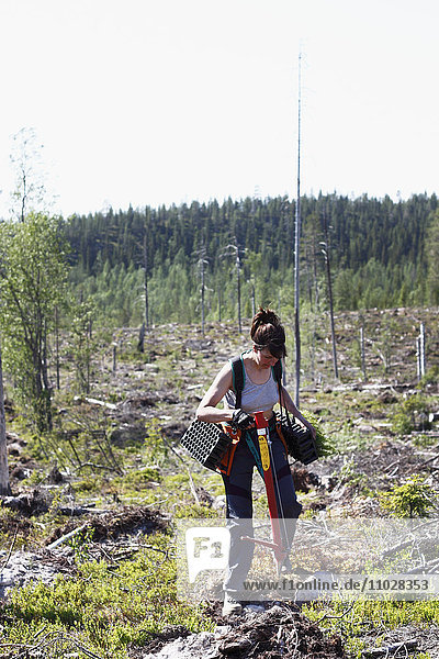 Woman planting trees in forest