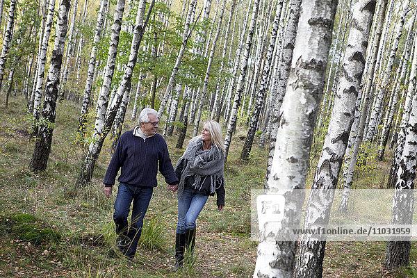 Senior couple walking in forest  Delsjon  Gothenburg  Sweden
