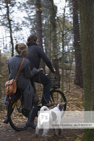 A couple on a bicycle excursion with their dog.
