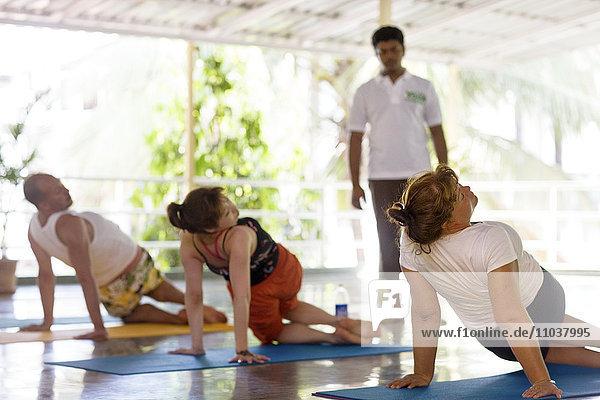 People performing yoga  India.