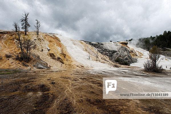 Heiße Quelle im Yellowstone Nationalpark  Wyoming  USA