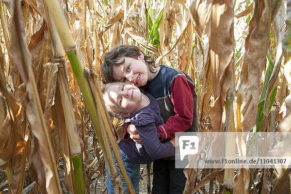 Junge Geschwister  die sich im Kornfeld umarmen  Porträt