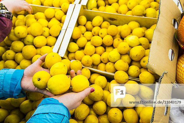 Hands of woman holding lemons from box