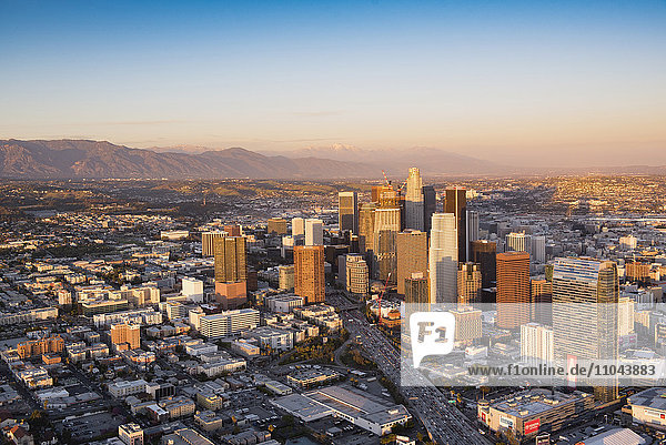 Aerial view of Los Angeles cityscape  California  United States