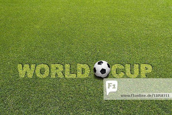 Rasen  Schriftzug World Cup  Fußball
