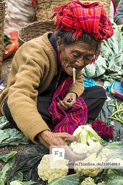 Smoking woman sells vegetables  from the Pao hilltribe  cauliflower  weekly market  Kalaw  Shan State  Myanmar  Burma  Asia