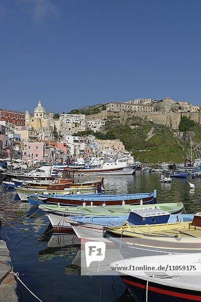 Fischerboote am Hafen  Marina di Corricella  Insel Procida  Phlegräische Inseln  Golf von Neapel  Kampanien  Italien  Europa