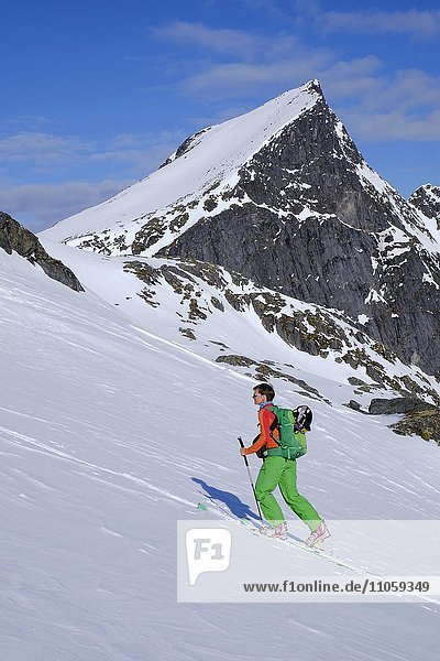 Frau bei Skitour  Aufstieg zum Burstinden  Senja  Norwegen  Europa
