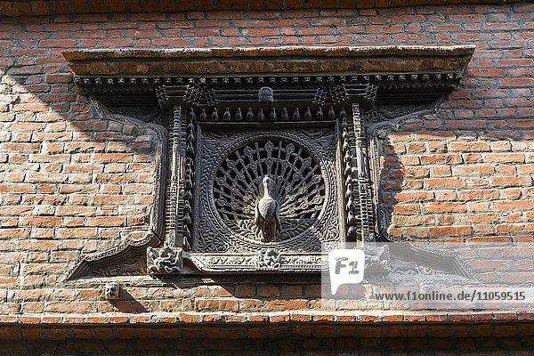 Fenster mit Holzschnitzarbeit  Pfau  an einem Haus  Bhaktapur  Kathmandu  Nepal  Asien