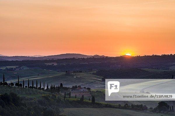 Typische grüne Landschaft der Toskana  Bauernhof auf Hügel  Felder  Zypressen  Bäume  Morgennebel bei Sonnenaufgang  Bagno Vignoni  San Quirico d'Orcia  Val d'Orcia  Toskana  Italien  Europa