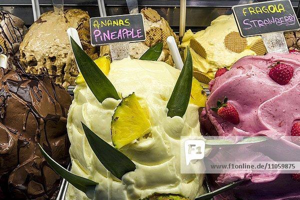 Speiseeis  Eis  appetitlich angerichtet in einem Geschäft  Siena  Toskana  Italien  Europa